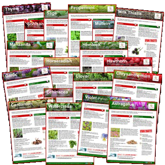 FREE Healing Herb Fact Sheets!