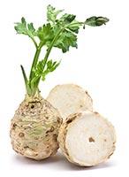 Celery (Qin Cai)