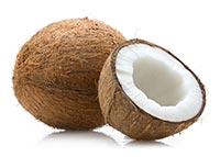 Coconut (Ye Zi)
