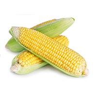 Corn (Yu Mi)
