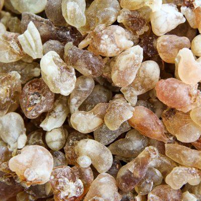 Frankincense (Ru Xiang)