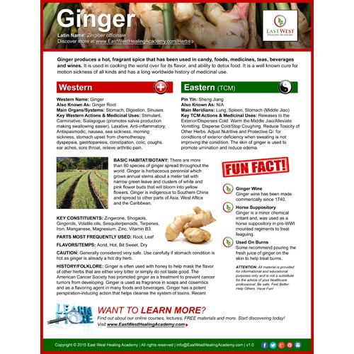 Ginger (Sheng Jiang) Fact Sheet