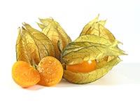 Goldenberry (Suan Jiang)