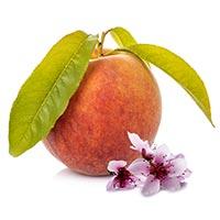 Peach (Tao Zi)