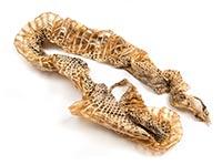 Snakeskin (She Tui)