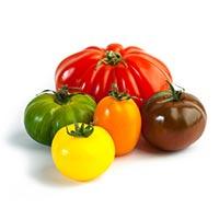 Tomato (Xi Hong Shi)