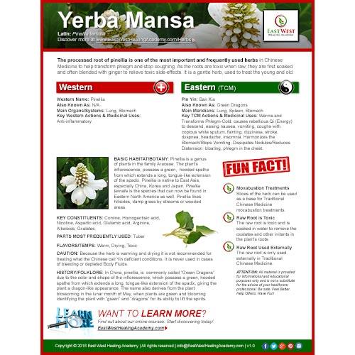 Yerba Mansa Poster